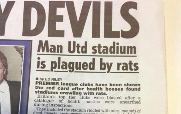"Rats glided through ""Old Trafford"""