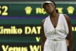 PHOTOS: toilet of Venus Williams Wimbledon again ridiculed